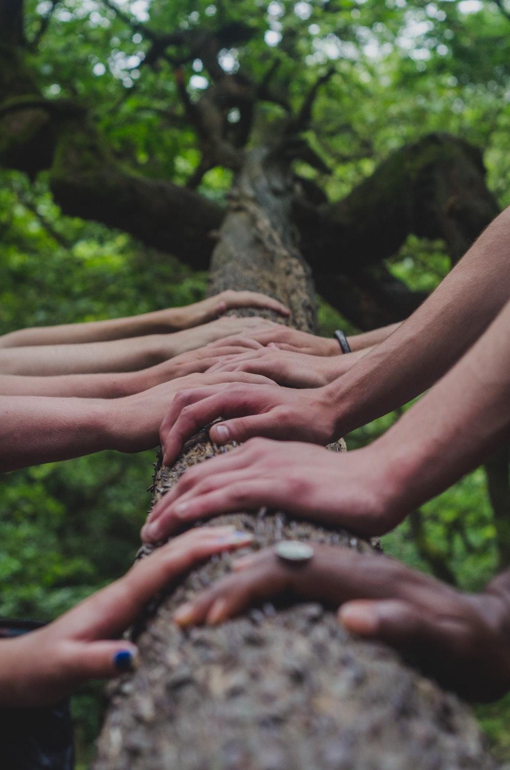 equipe-esprit-cohesion