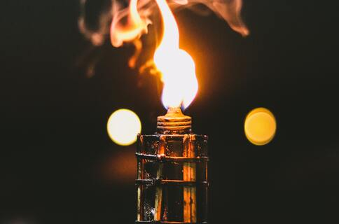 torch-242